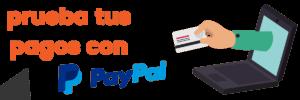 Cómo PROBAR LOS PAGOS con PayPal en tu página web